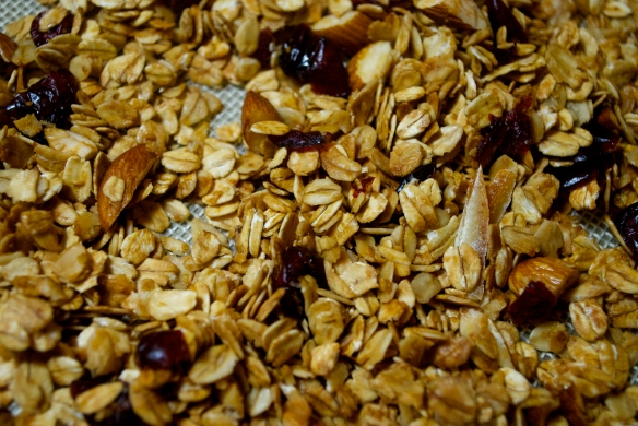 Granola w. Cranberries, Almonds and Candied Orange Peels