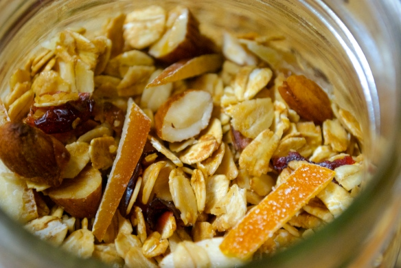 Granola w/ Cranberries, Almonds and Candied Orange Peel