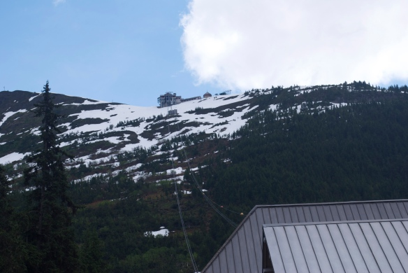 Looking up from the bottom of the Alyeska Tram