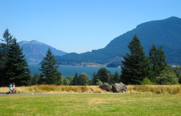 View from Skamania Lodge