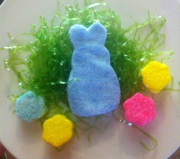 The Blue Bunny
