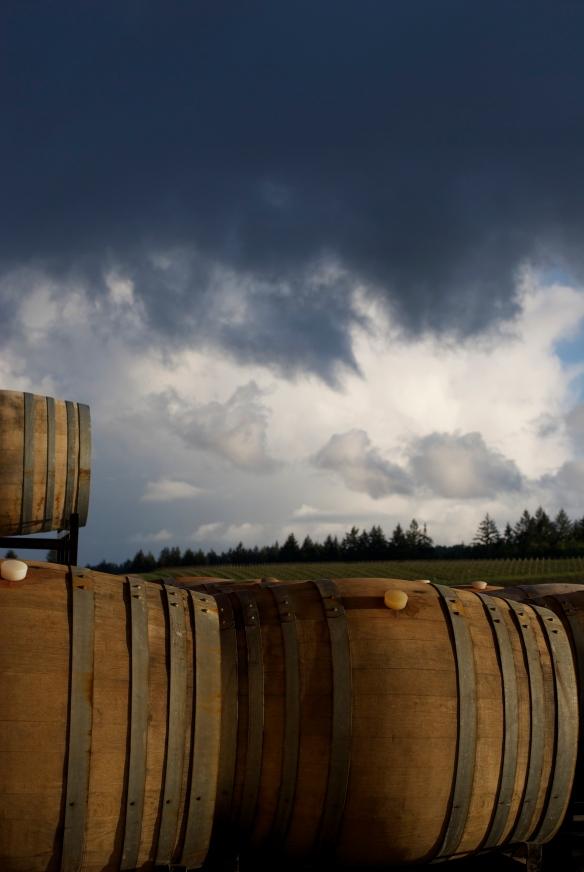 Methven Family Wines Vineyard