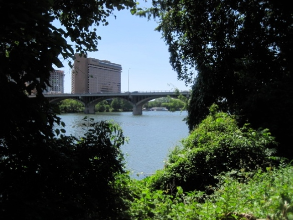 View of Congress Bridge from the trail