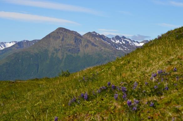 From Pillar Mountain, Kodiak, AK