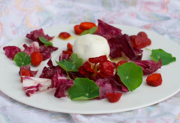 Burrata Salad with Strawberries, Radicchio and Nasturtium Leaves