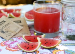 Watermelon Vodka Jello Slices