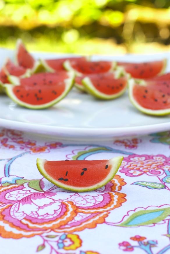Watermelon Vodka Jello Slices