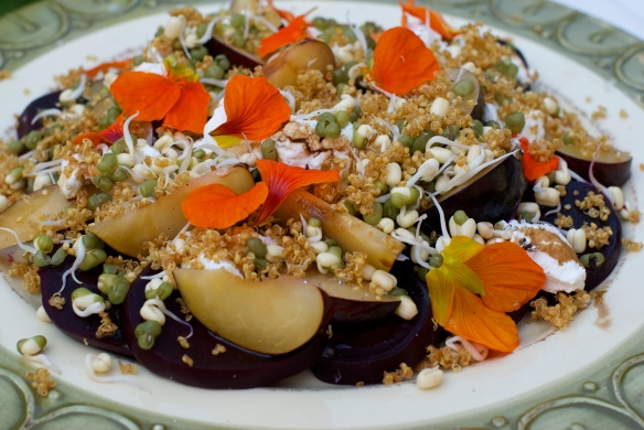 Course 1: Beets, plums, goat cheese, mung bean sprouts and crispy quinoa