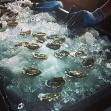 Hama Hama Oysters