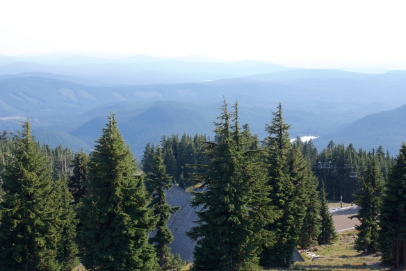 View from Timberline Lodge