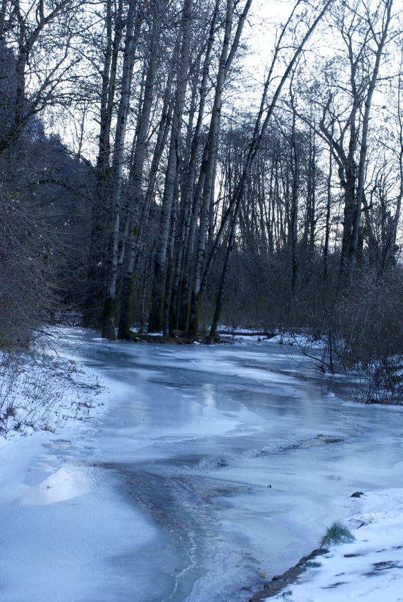 The Columbia Gorge in winter