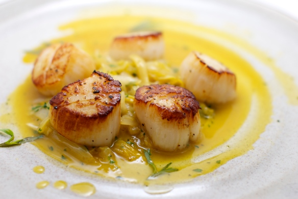 Seared Kodiak scallops with citrus-braised endive