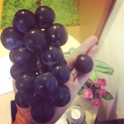 Biggest grapes ever!